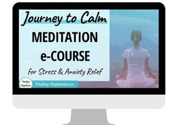 Icon Journey to Calm Course